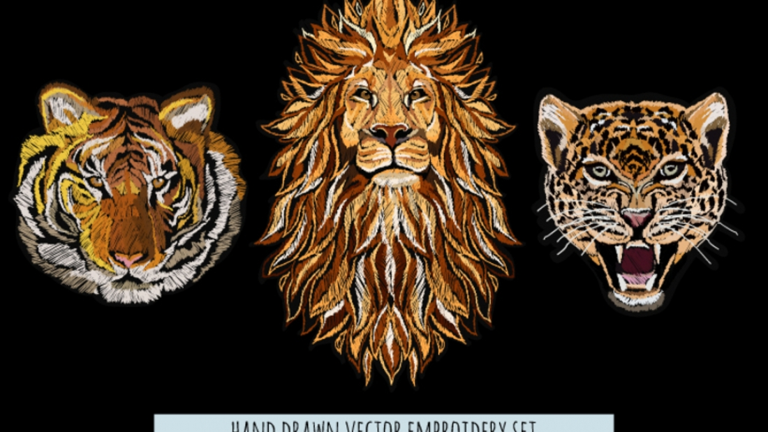 Top 7 Embroidery Stitches Every Embroiderer Should Know