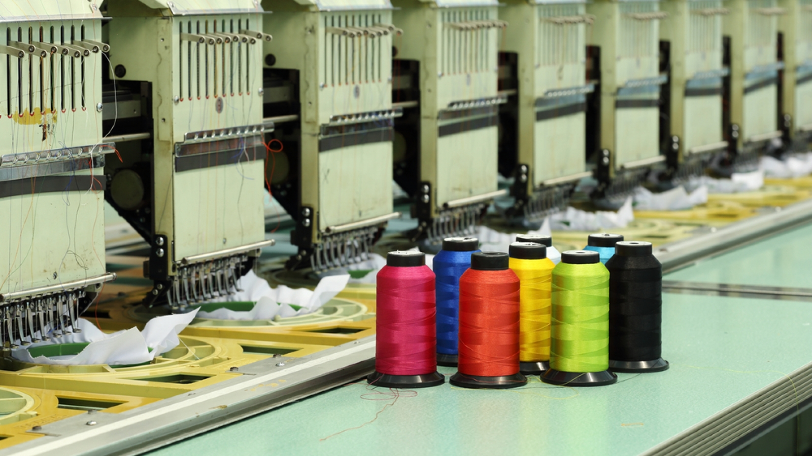 How to Digitize Your Logo for Embroidery in USA | Quick Guidelines